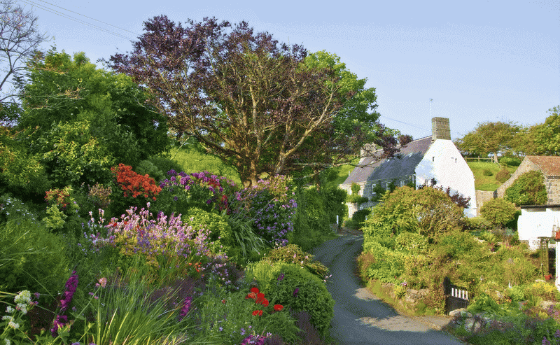 Self Catering Winding Lanes
